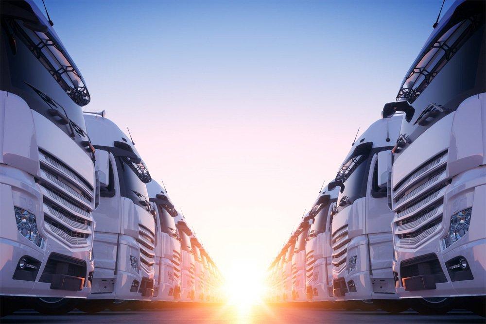 Eastern suburbs removals Sydney truck fleet