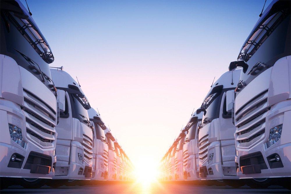 Lux Moves Miranda Removals trucks